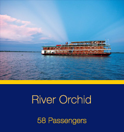River-Orchid