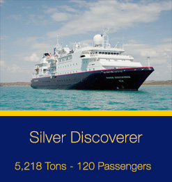 SilverDiscoverer