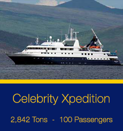 Celebrity-Xpedition